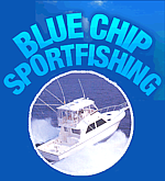 Blue Chip Sportfishing